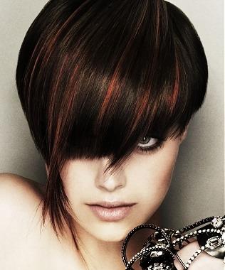 Dark Brown Hair with Red Hig