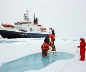Científicos de la NASA asombrados por super floración en el Ártico  Descubren-bosque-desierto-helado-artico_1_1280365