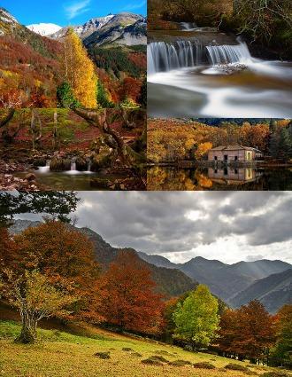 Fotografías de paisajes y animales