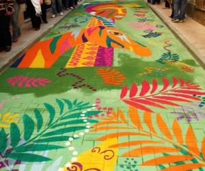 Las alfombras de elche de la sierra de inter s tur stico - Alfombras sierra ...